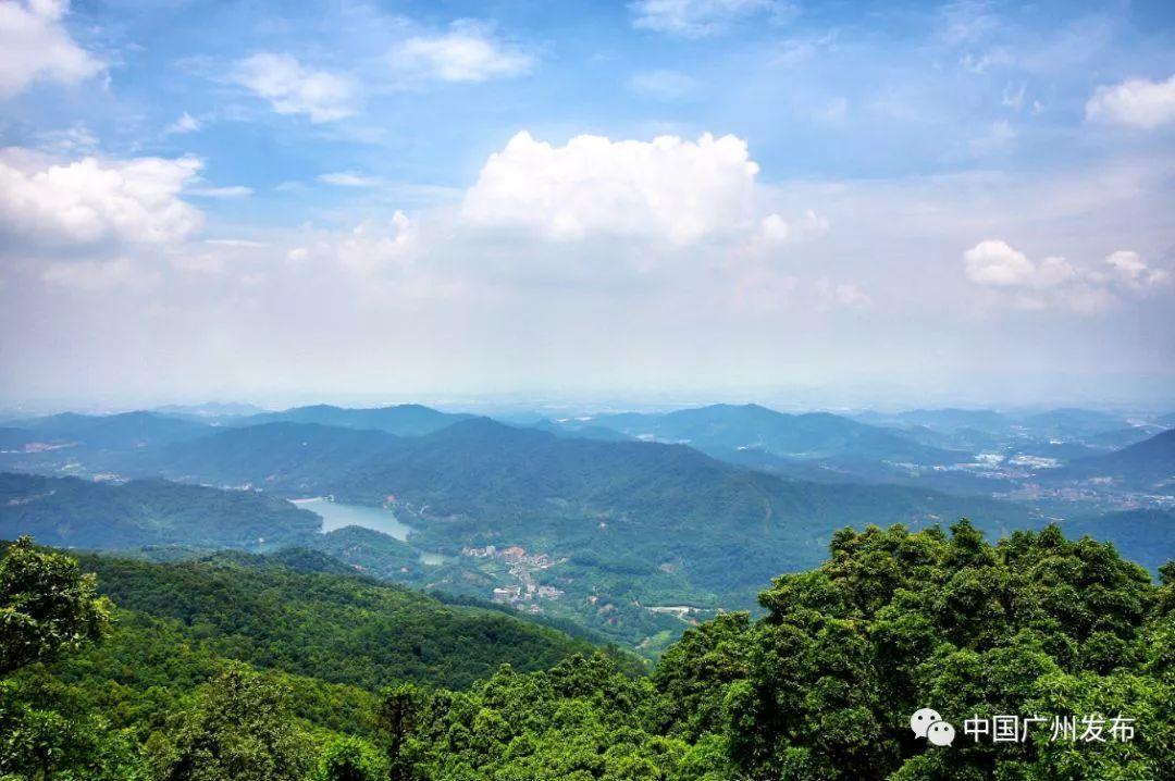 白云湖公园             广州第一个国家级水利风景区